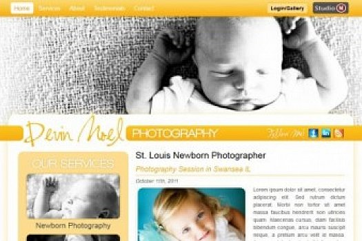 St. Louis Web Design for New Born Photography